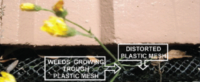 plastic-mesh gutter protection